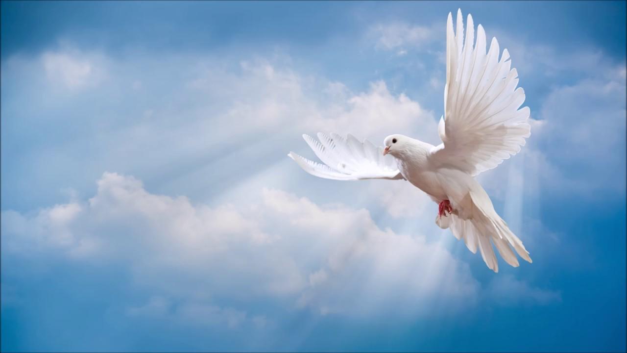 Алые капли падают - Христианская песня
