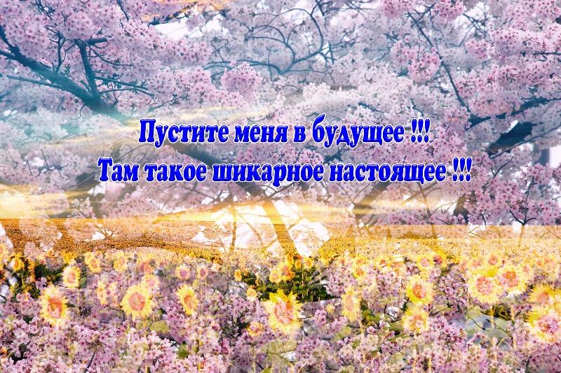 file_07c30de.jpg