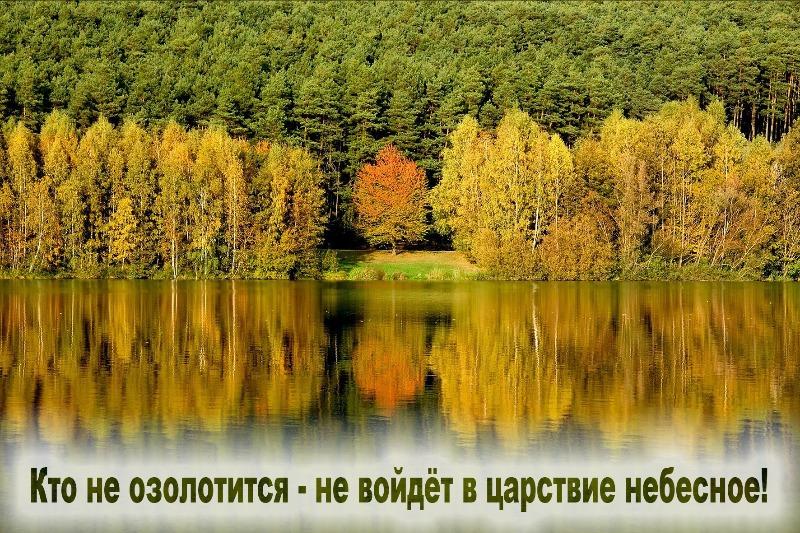 file_ab6025c.jpg