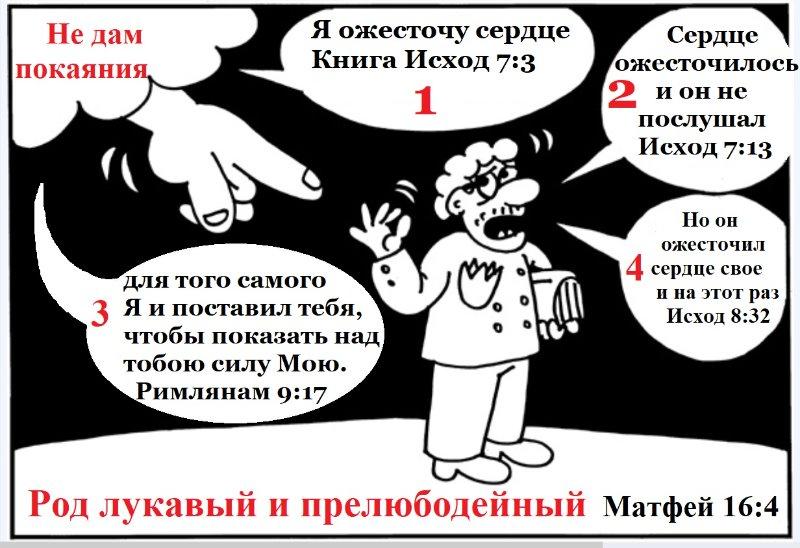 greshnik_2019-02-24-2.jpg