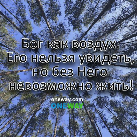 Без чего человеку трудно жить